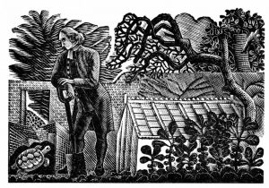 Eric Ravilious, The Tortoise in the Kitchen Garden from 'The Writings of Gilbert White of Selborne', 1938